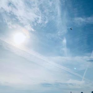 凧揚げ、大空高く。