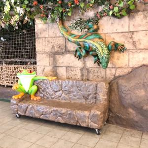 【】Rainforest   Cafe♪