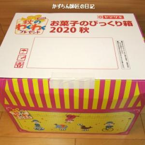 ヤマザキ 秋のわくわくプレゼント2020 当選しました