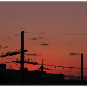 夕景シルエット