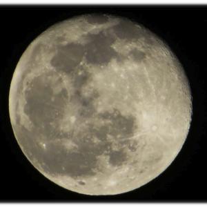 年末の月は満月ではないがコールドムーンと呼んでおこう