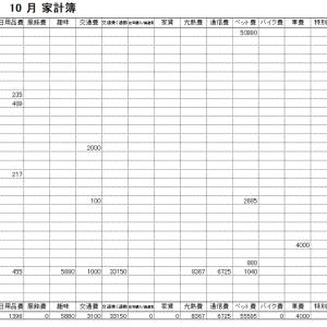 2019年10月家計簿 総計¥141453