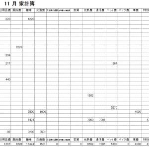 2019年11月家計簿 総計¥82767