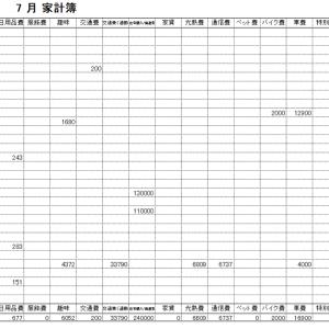 2020年7月家計簿 総計¥333904