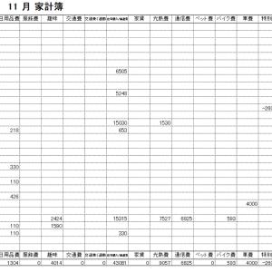 2020年11月家計簿 総計¥68296(航空券の返金分¥26000、マイナス計上しています)