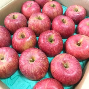 秋冬のフルーツ満喫期間スタート!~まずはリンゴ~