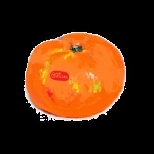 秋冬のフルーツ満喫~続々到着!~