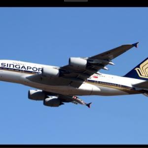 シンガポール航空 客室乗務員募集
