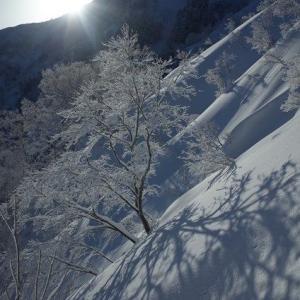 鍬崎山(雪洞泊訓練)のまとめ