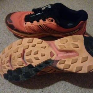 遡行後の下山靴はこれしかないのだよ。