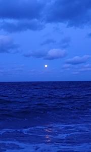 海サクラマス 2020釣行記