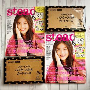【雑誌付録】steady.(ステディ.)12月号 大失敗 スヌーピーカードケース