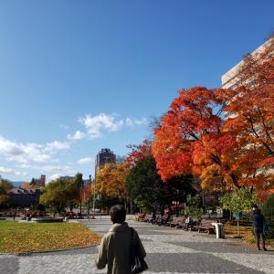 札幌のなつかしい大通公園