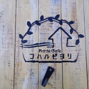 淡路島のプランツカフェ!?コハルビヨリに行ってきたよ!