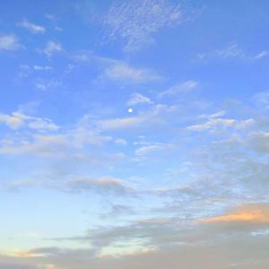 夏の淡路島で早朝チヌトップゲーム実釣レポ!