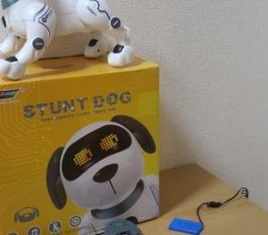 4連休のパートナー ロボットドッグ