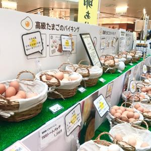 幻の卵やさん!日本たまごがけご飯研究所の卵バイキングに遭遇〜♪