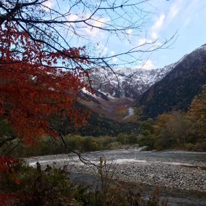 早朝散歩でお猿に遭遇と朝食と最終日のハイキング編☆GOTO で1泊2日上高地に宿泊してみました!