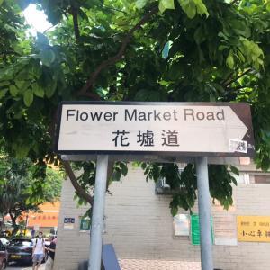 香港のフラワーマーケットの散策が楽しかったのと冷たいデザート!