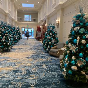 クリスマスツリー10本以上待機中