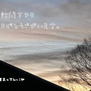 一段と寒い朝ぁ。