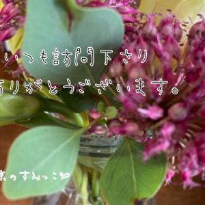 自然いっぱいの東京のすみっこ【雨】止んだね〜
