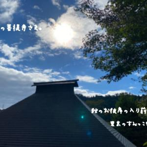 本日お休み〜 ( ´∀`)