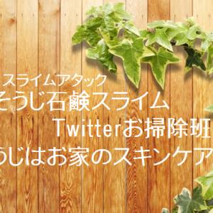よく出てくる用語集【スライム・#Twitterお掃除班・#そうじはお家のスキンケア】