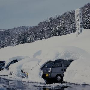 7m85cm 駅の最高積雪量