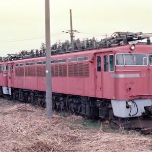 EF7051 EF7057 留置