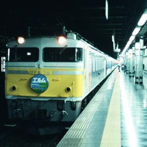 EF8179カシガマ エルム