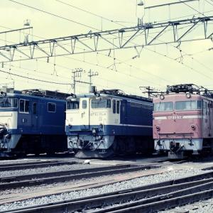 EF641053 EF651034 EF8062