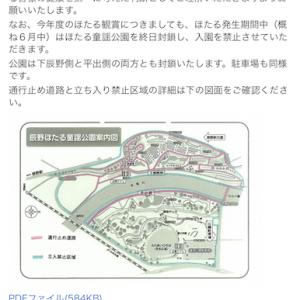 徳島あっちこっち vol.46 「美郷のホタル」