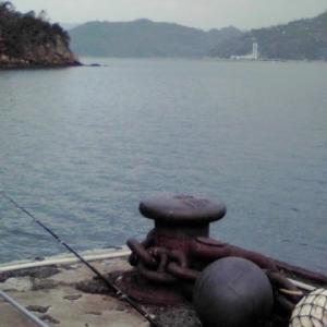 鯛釣り日記