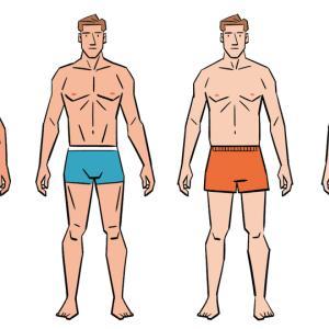 体脂肪とシックスパック