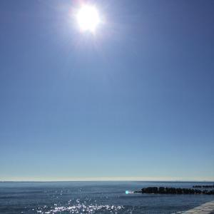 湘南の海に癒されてきました