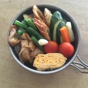 【お弁当】面倒くさがりが選ぶ、新しいお弁当箱。超軽量、頑丈、洗いやすい!
