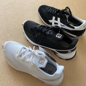 【ミニマルワードローブ】試着を重ね、靴を買い替え。