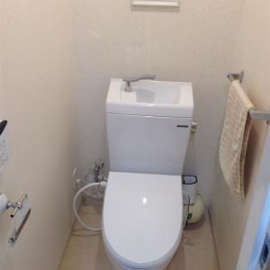【閲覧注意】トイレで中をみたら、汚れがひどかった件