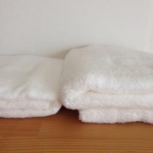 【匂わない洗濯物】酸素系漂白剤だけの洗濯