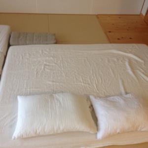 【ミニマリストの持ち物】来客用敷布団の最適解。