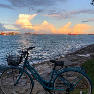 Myチャリでシンガポールの夕陽を!今の気持ち!