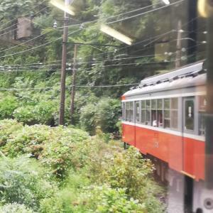 箱根登山電車に乗りたいと思うのですが、来年までは無理かも知れません。