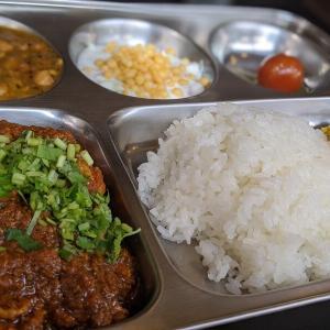 【涙腺崩壊】松本市のカレーの名店「Doon食堂印度山」のスパイスの魔法にグッと来た!