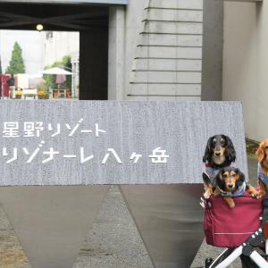 2019.09 八ヶ岳  ~番外編 1~