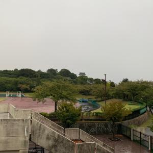 雨の日は‥(;´д`)