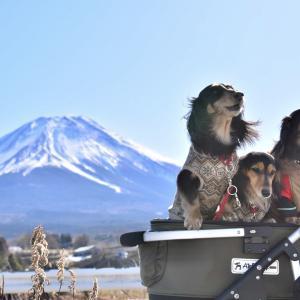 2020.02.09~11  長野〜静岡  《富士山②》