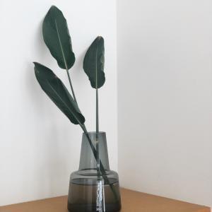 剪定した観葉植物を花瓶に♡ scopeで訳あり商品諸々放出中〜!!!