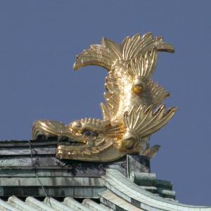 11/14 お茶会です @名古屋城