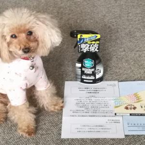 【当選品】 リセッシュ&七輪焼肉安安 優待券5,000円 花王